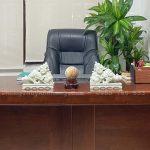 Quả cầu đá gỗ Hoá Thạch để bàn làm việc giám đốc